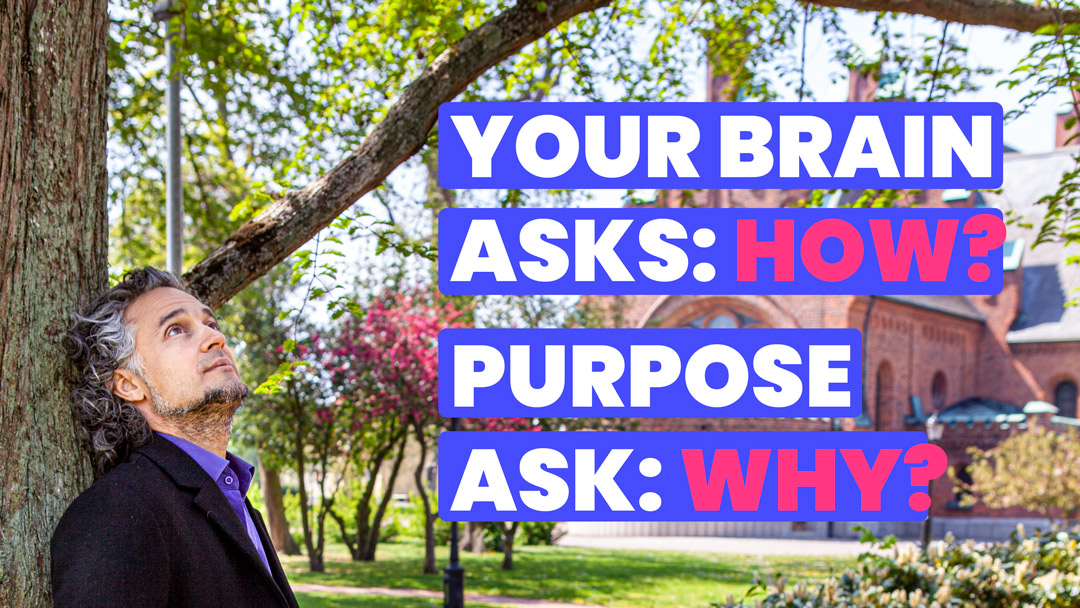 Find your WHY and your purpose will unfold
